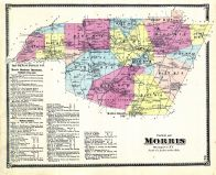 Morris - Town, Otsego County 1868
